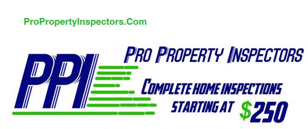 Pro-Property-Inspectors-Header